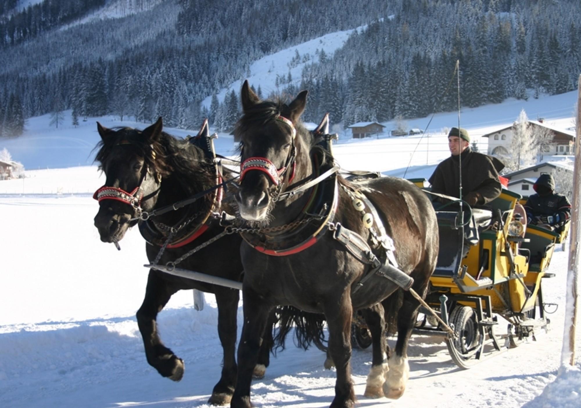Bilder Amp Videos In St Martin St Martin Am Tennengebirge