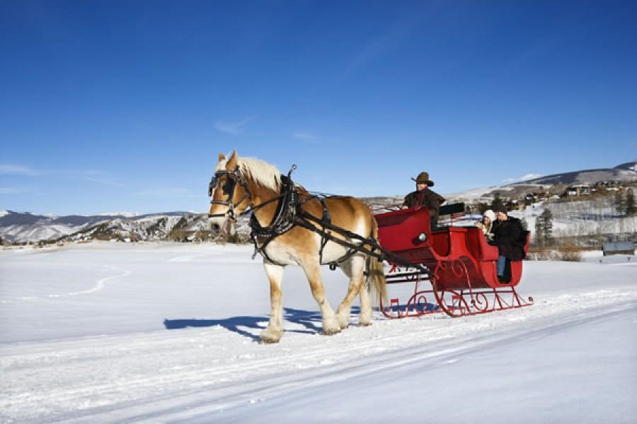 sleigh rides in st martin tennengebirge st martin am tennengebirge