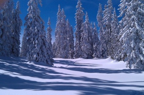 Winterlandschaft in St. Martin am Tennengebirge